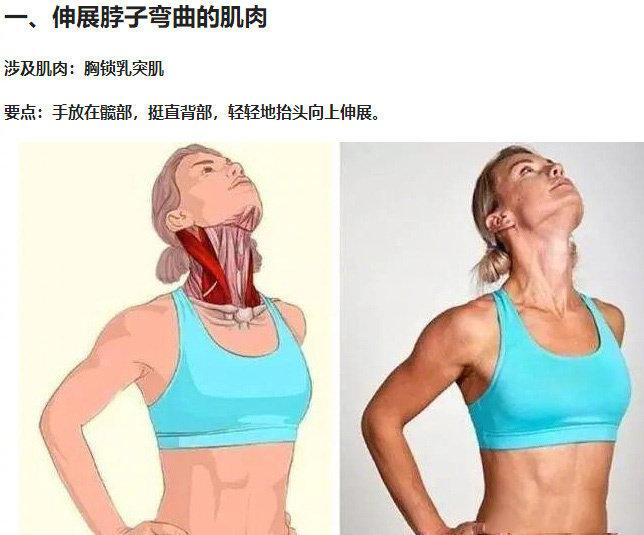 久坐不动腰酸背痛,超实用拉伸动作3D图解~