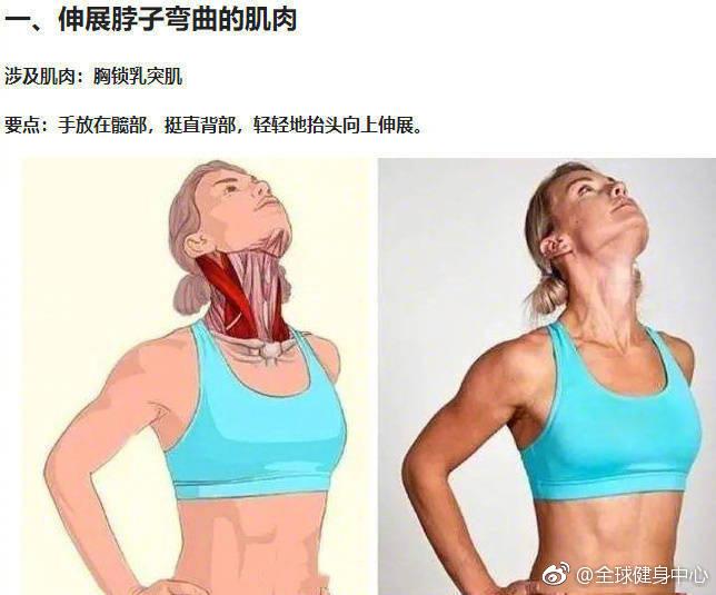 久坐不动腰酸背痛,超实用拉伸动作3D图解! 解救僵直的脖颈 !