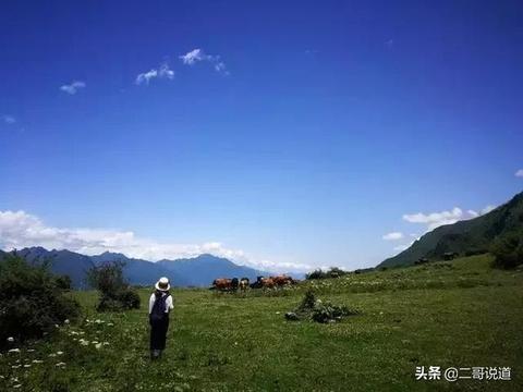 四川有个梦幻圣地,星空牧场,云海绿水,目之所及都是惊艳风景