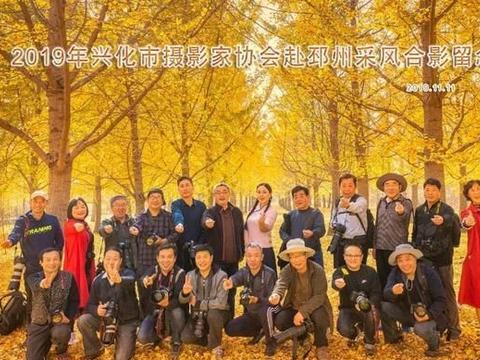 金黄银杏金黄梦——兴化市摄影家协会邳州行采风作品欣赏