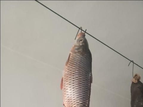 囤年货2:精心准备的一条小鲤鱼,用来做菩萨鱼,当然还有猪头肉