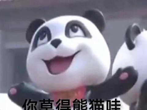 哈哈哈哈哈哈哈哈哈哈哈哈哈好想去当熊猫饲养员啊