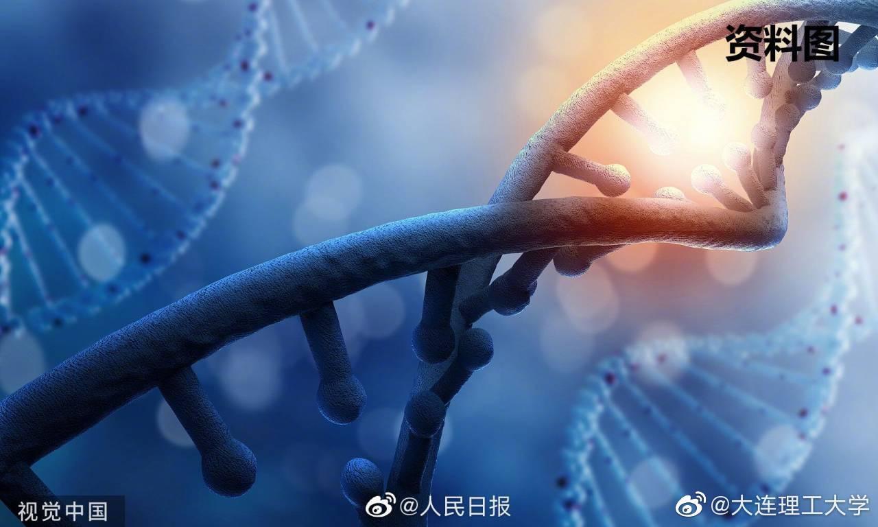 发布:细胞、量子、DNA、蛋白质和受体