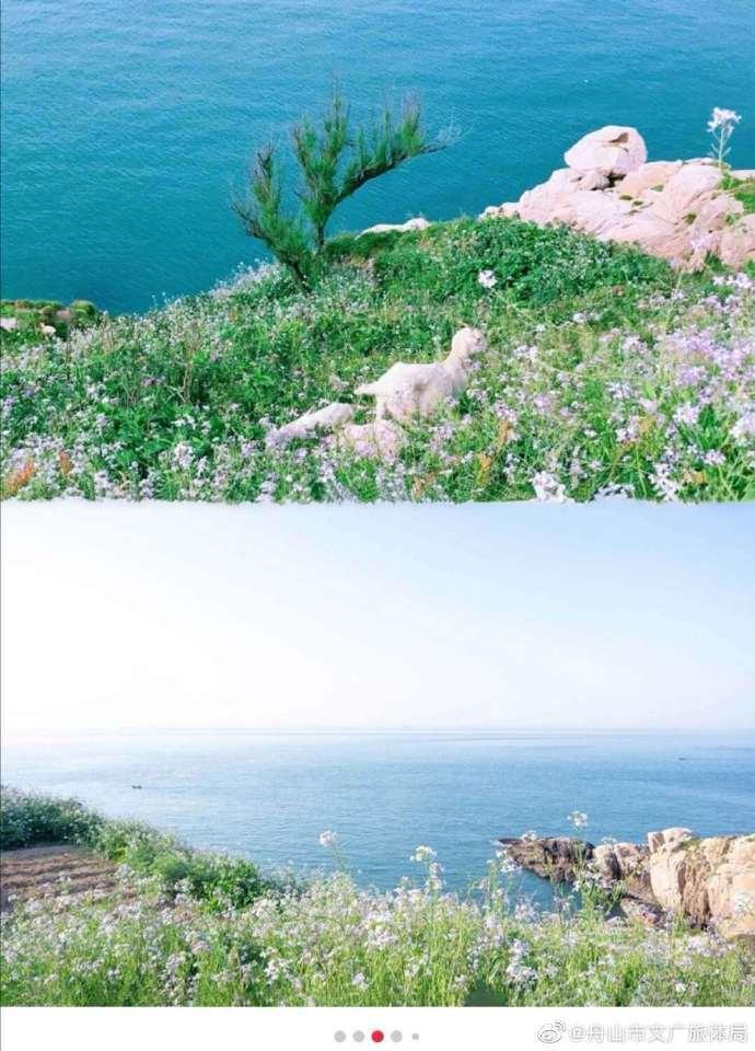 舟山花鸟岛超细攻略来了!想念那片海,先马住,夏天一起去看海吧~~