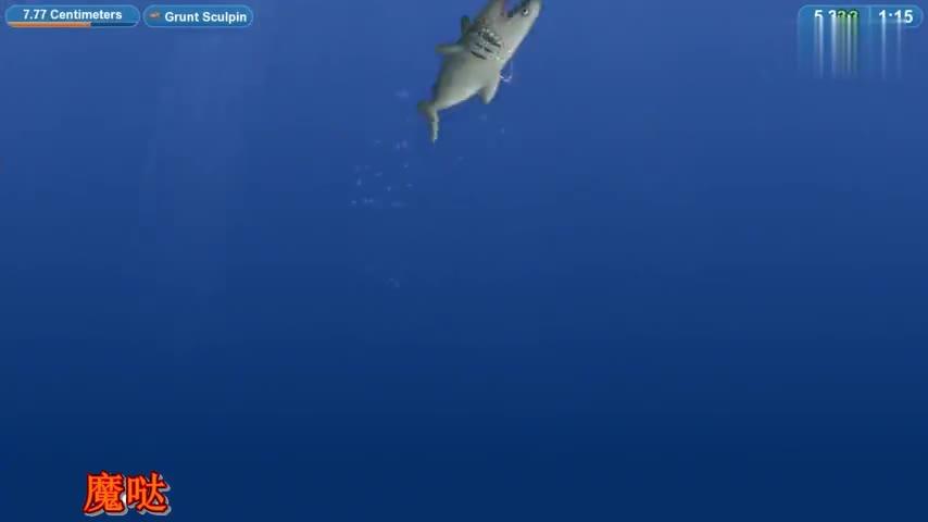 美味星球:吃货大白鲨登场,开局就出生在海洋里海鲜随便吃啊