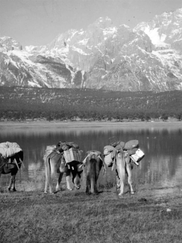 八十年前的丽江古城。1938年10月,一支国外考察队途经云南丽江