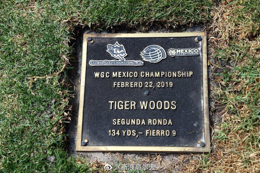 2019年墨西哥锦标赛伍兹惊艳全世界的沙坑救球成为此洞经典记忆。