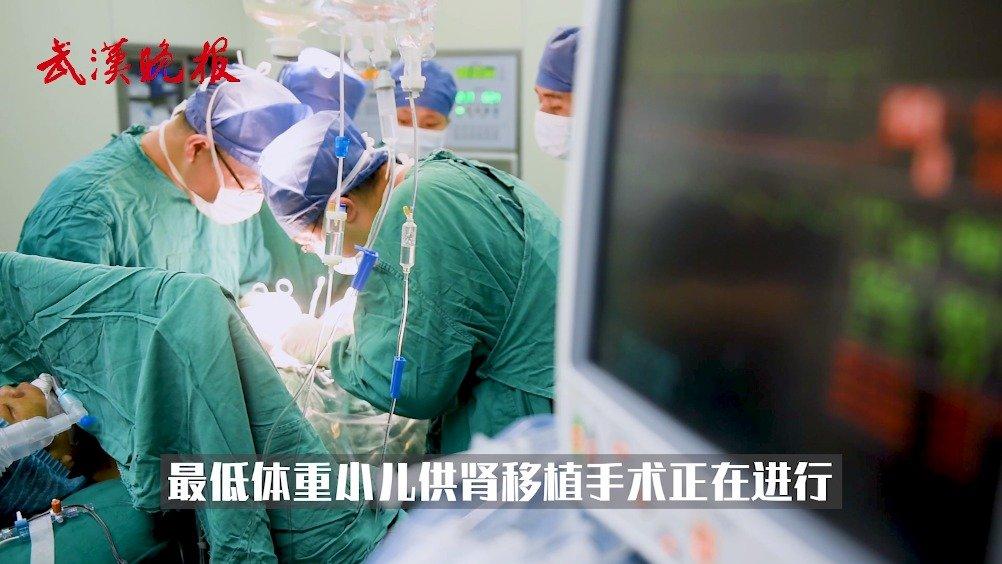 武汉医生刷新世界最低体重小儿供体肾移植纪录