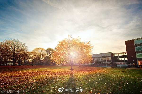 2020世界大学排行榜发布 4所川内高校上榜