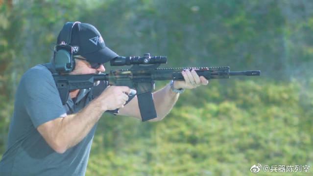威尔森战斗枪械300 HAM'R战术卡宾
