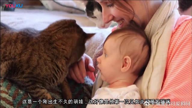 萌娃第一次见猫咪会有怎样的反应呢?这一幕真的好有爱,好温馨啊。