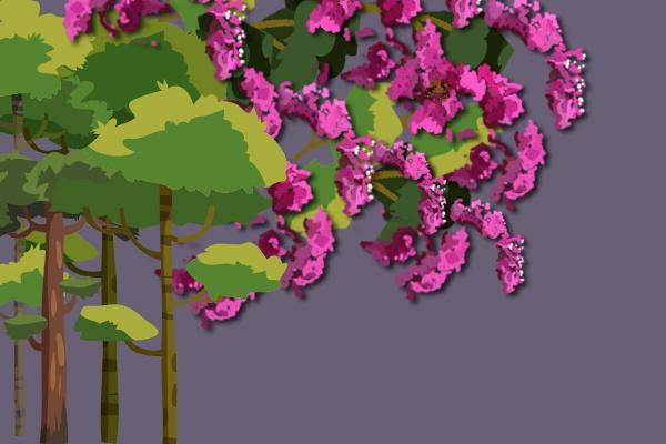 """""""痒痒树""""紫薇真的怕痒吗?"""