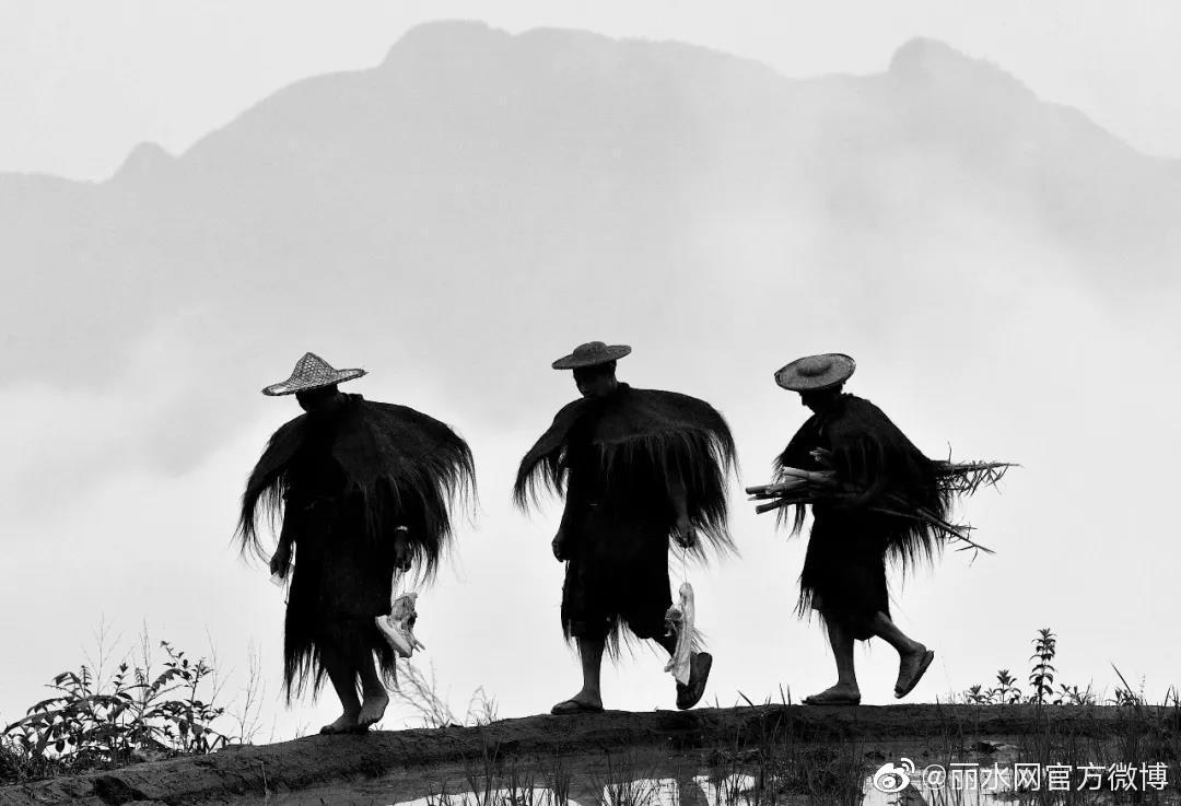 """第二届""""长寿之乡杯""""摄影比赛获奖名单揭晓,这些获奖作品很惊艳"""