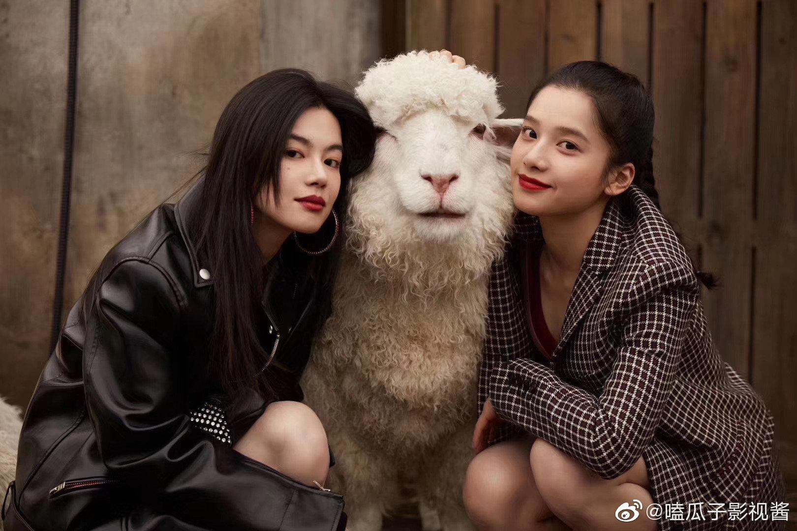陈坤携|李蔓瑄|张婧仪|蒋昀霖|李嘉灏|鹿骐|刘洋珂|贺雨禾|刘白沙|林