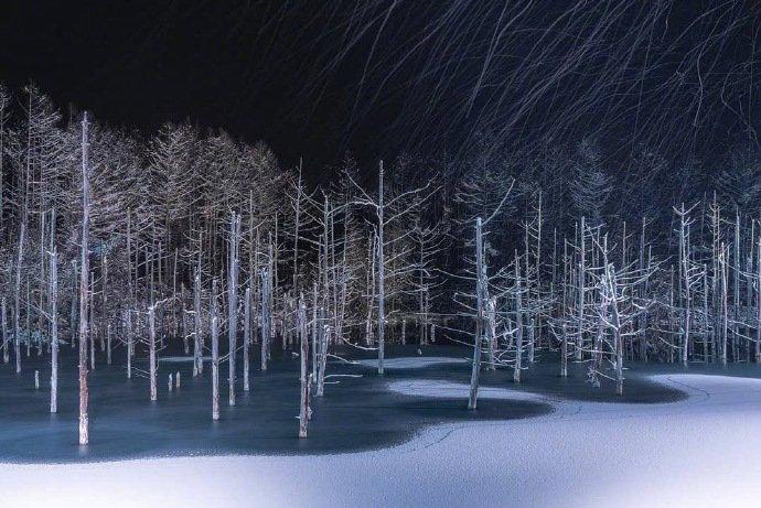 北海道美瑛青池夜景