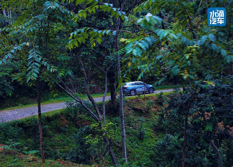是骡子是马 拉出来溜溜  奇瑞瑞虎8雨林探秘72小时