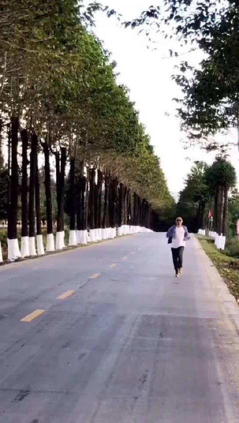 随风奔跑自由是方向,敢爱敢做勇敢闯一闯