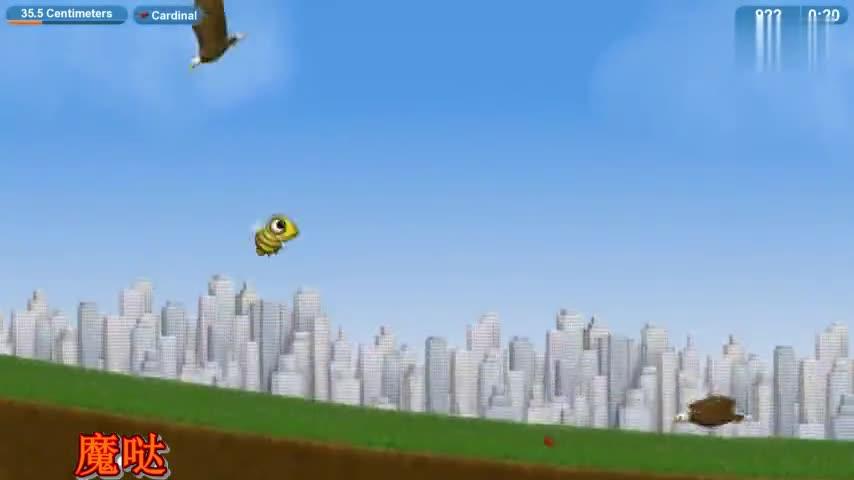 美味星球:吃货小黄蜂大闹大白雕的栖息地,看到的全部都吞了