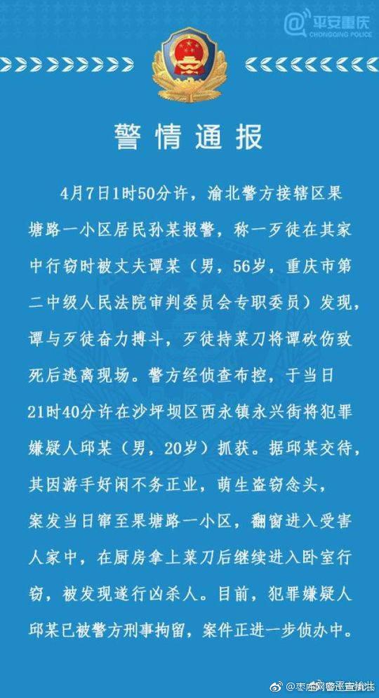 重庆二中院审判委员会专职委员谭某与小偷搏斗受伤致死