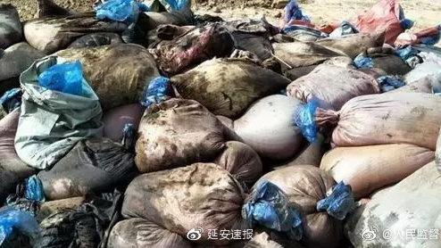 长庆油田第八采油厂一作业区拆迁过程掩埋污油