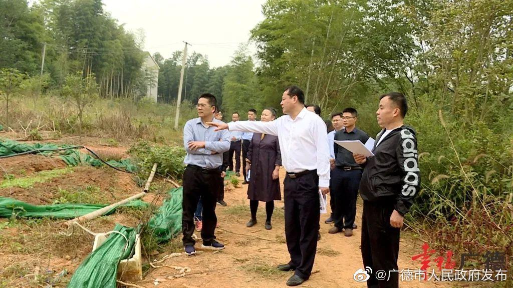 王庆武督查扬子鳄国家级自然保护区问题整改工作