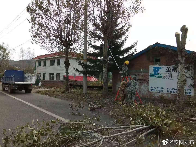 安图县住建局园林管理中心及时修剪超高树木消除安全隐患