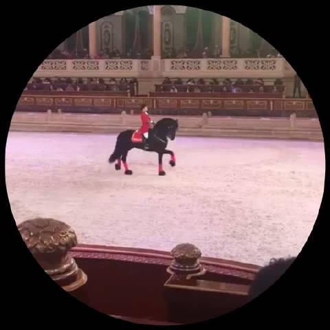盛装舞步(英文名称:Dressage),又称花样骑术和马场马术