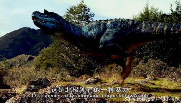 侏儒暴龙是顶级的捕食者,伶牙和利爪是捕捉猎物的极佳工具