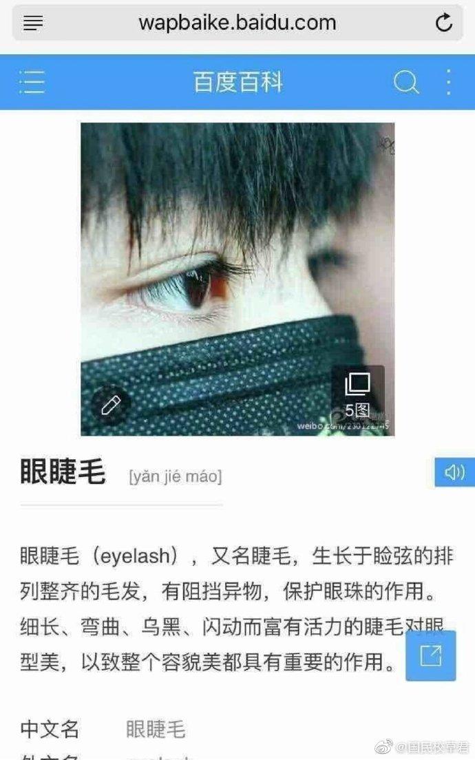 """百度百科里对""""眼睫毛""""和""""睫毛""""两个词语解释的配图用的都是王俊凯"""