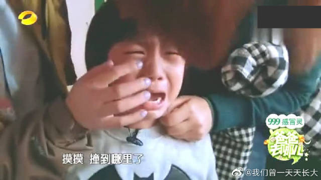 kimi撞到鼻子掉皮,没注意撞到摄像机,林志颖心疼死了!
