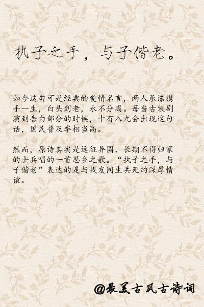 诗词,经历了数千年的时光依旧流传至今,是因为透过这些优美的语句