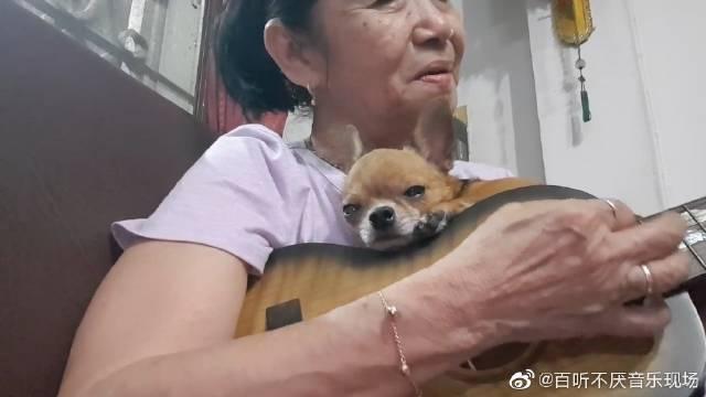 马琳达奶奶吉他演奏《Because I love you》,带有岁月痕迹的声音