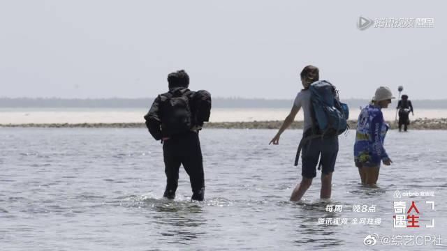 花絮:苏有朋看到海参超兴奋,阿雅:你不会想要吃它吧?