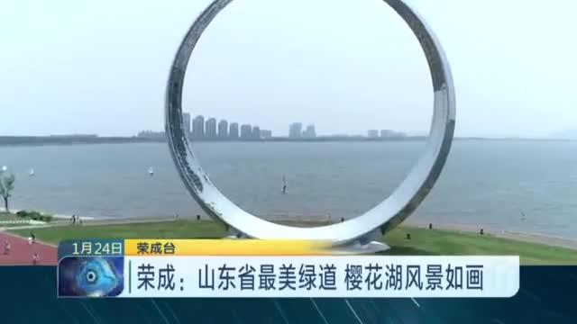 荣成:山东省最美绿道  樱花湖风景如画