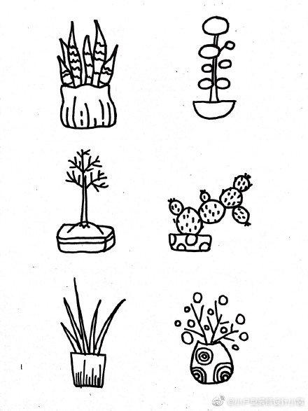 盆栽植物花盆简笔画手绘手账素材 cr. 教画画的沈老师