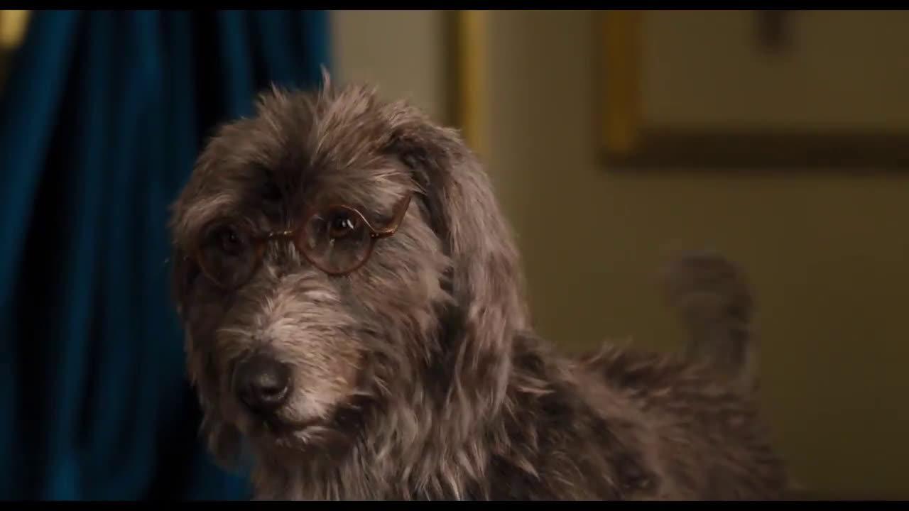 《多力特的奇幻冒险》曝光荷兰弟配音特辑,剧中荷兰弟为狗狗配音