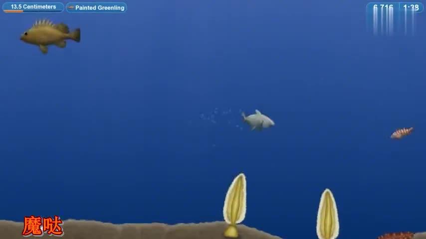 美味星球:吃货大白鲨完结篇,称霸海洋核潜艇都阻止不了我