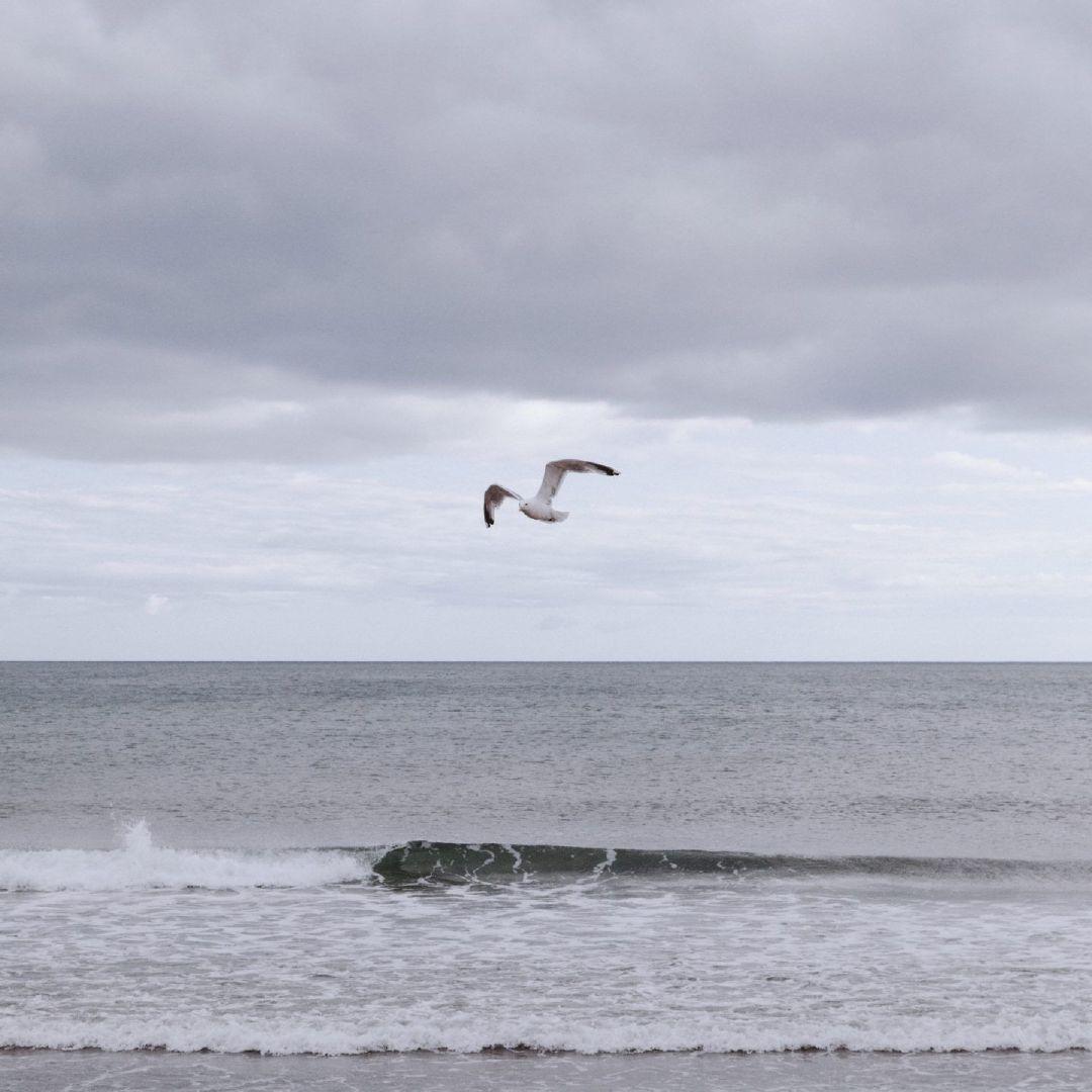 △纽约摄影师 Landon Speers  在加拿大的新斯科舍省旅行期间记录了