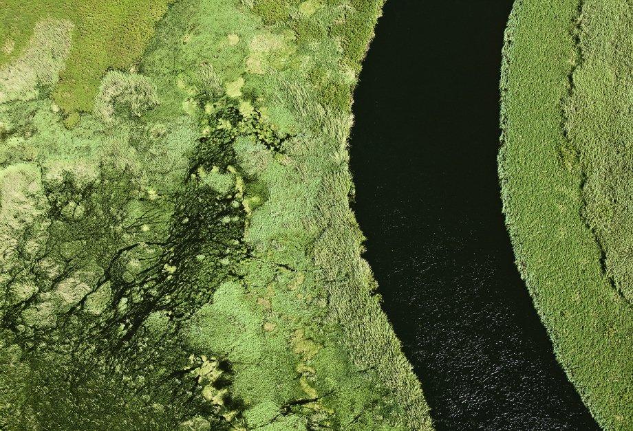 这组照片拍摄于南非,自然的馈赠给了我们的视觉更多发现的空间