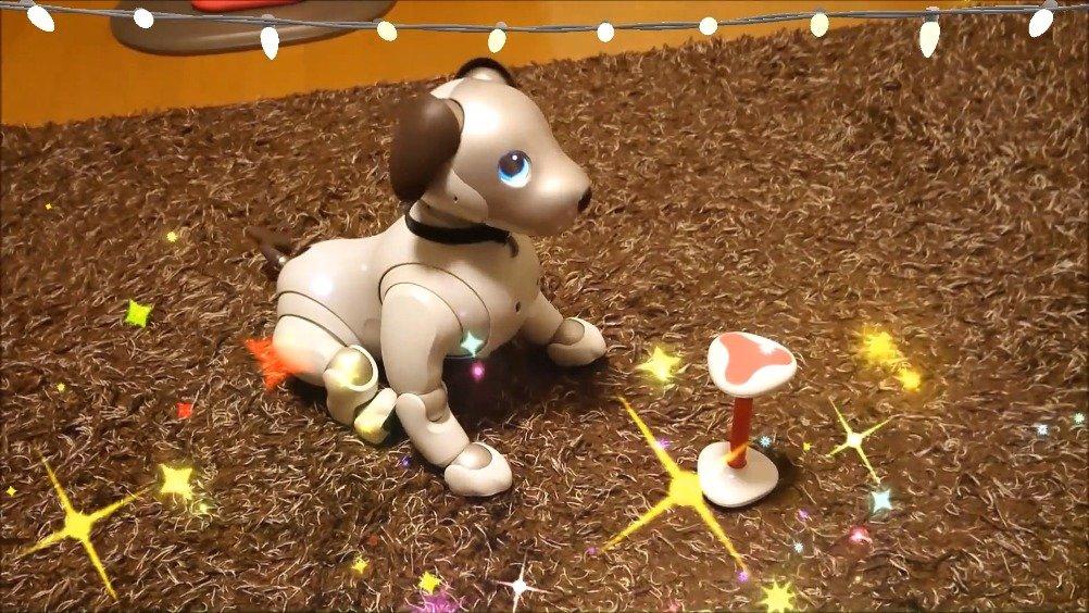 来听听 aibo 唱生日歌!它还会吹蜡烛哟!