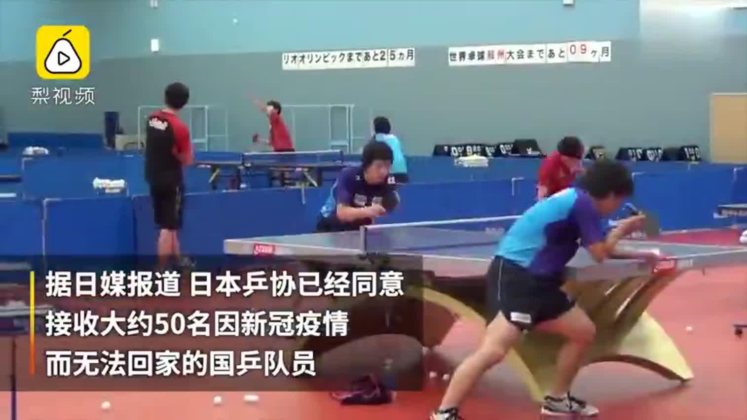 ,团体世乒赛后可在日本训练至6月份