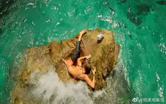 鲨滩的人不怕鲨鱼把鲸鱼尸体拖走,美女感觉不对劲,赶紧跳下海