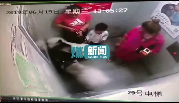 6月19日上海青浦区一栋居民楼,电梯内发生宠物犬伤人失控事件