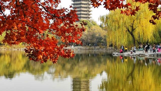 北京大学欢迎你!@北京大学