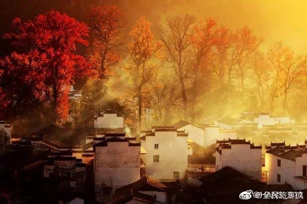 骛源的秋色太美了丨五岳归来不看山,九寨归来不看水