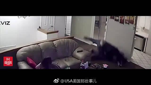 美国爱达荷州发生了一起入室抢劫案