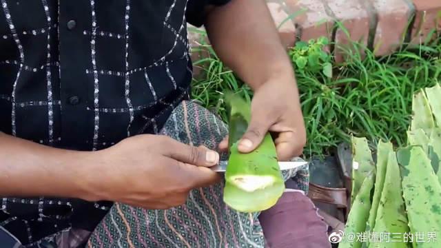 印度街头的爆款饮料,刮下的芦荟汁粘稠不堪,一口估计就能喝完!