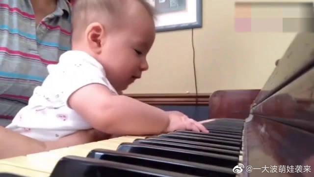 五个月的小宝宝第一次见到钢琴,就忍不住弹了起来,这一幕太美了。