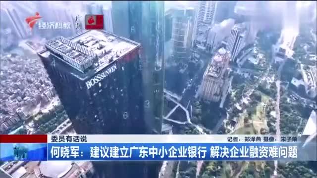 委员有话说!何晓军:建议建立广东中小企业银行,解决企业融资难