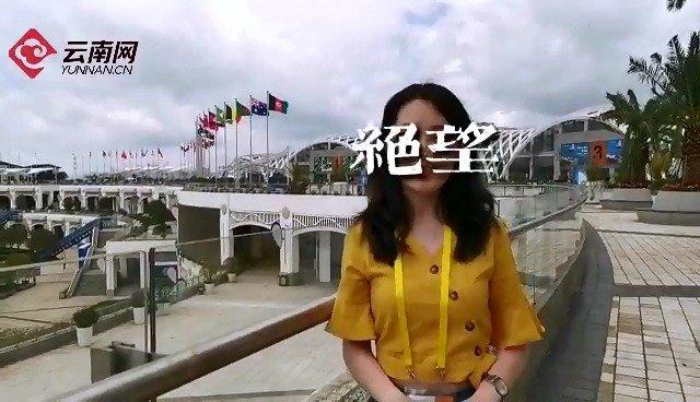 """云南网Vlog:与""""歪果仁""""的非正式会谈"""